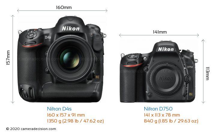 Nikon D4s vs Nikon D750 Camera Size Comparison - Front View