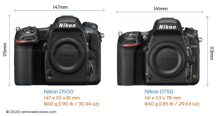 Nikon D500 vs Nikon D750 Camera Size Comparison - Front View