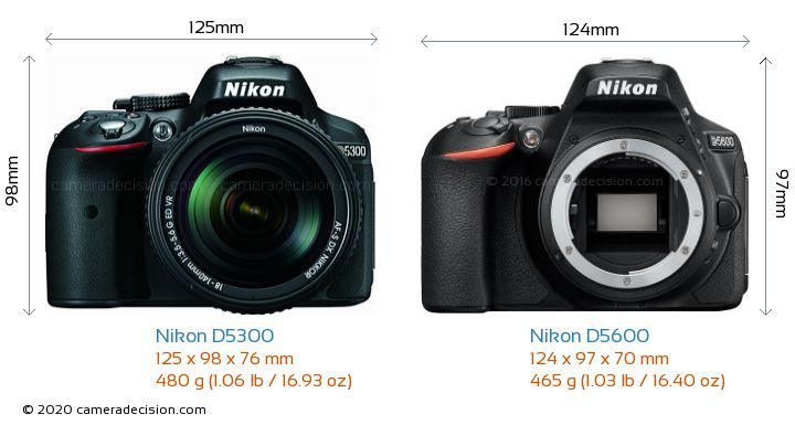 Nikon D5300 vs Nikon D5600 Camera Size Comparison - Front View