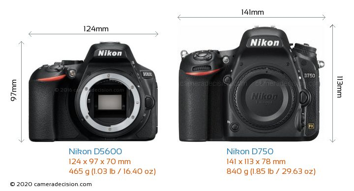 Nikon D5600 vs Nikon D750 Camera Size Comparison - Front View