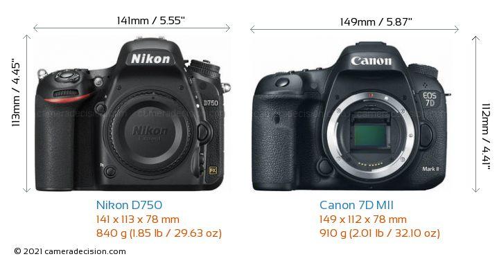 Nikon D750 vs Canon 7D MII Camera Size Comparison - Front View