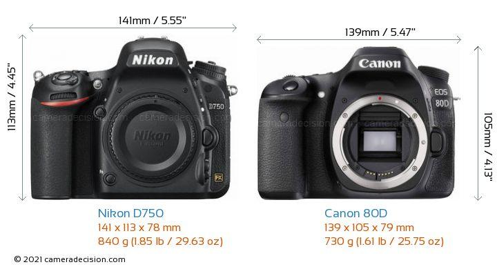 Nikon D750 vs Canon 80D Camera Size Comparison - Front View