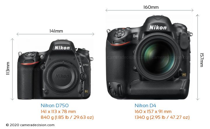 Nikon D750 vs Nikon D4 Camera Size Comparison - Front View