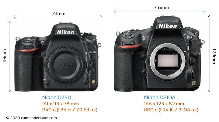 Nikon D750 vs Nikon D810A Camera Size Comparison - Front View