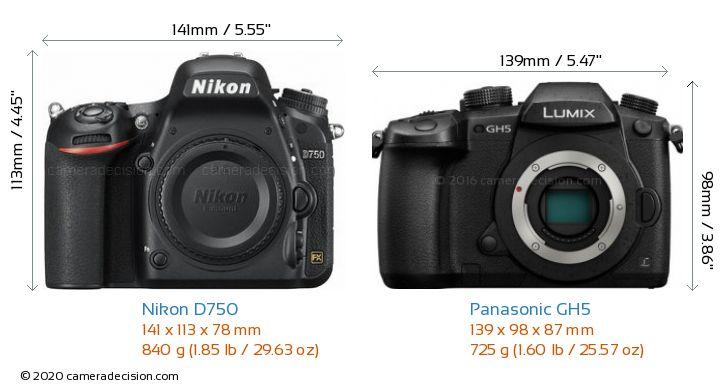 Nikon D750 vs Panasonic GH5 Camera Size Comparison - Front View