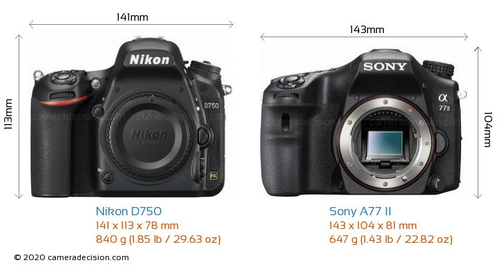 Nikon D750 vs Sony A77 II Camera Size Comparison - Front View