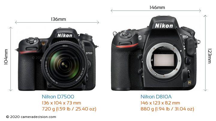 Nikon D7500 vs Nikon D810A Camera Size Comparison - Front View
