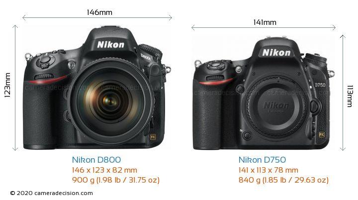 Nikon D800 vs Nikon D750 Camera Size Comparison - Front View