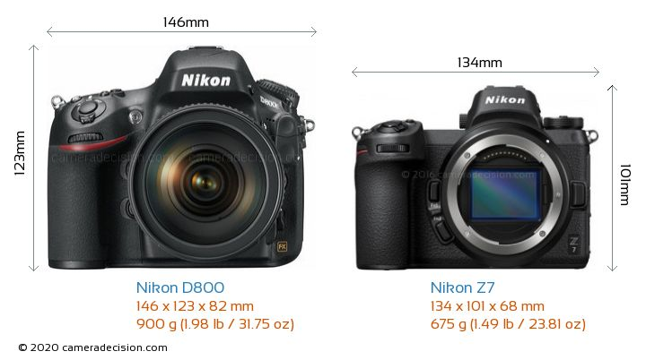 Nikon D800 vs Nikon Z 7 Camera Size Comparison - Front View