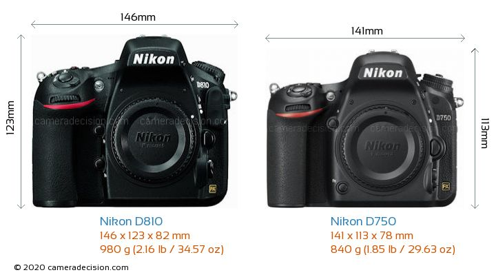 Nikon D810 vs Nikon D750 Camera Size Comparison - Front View