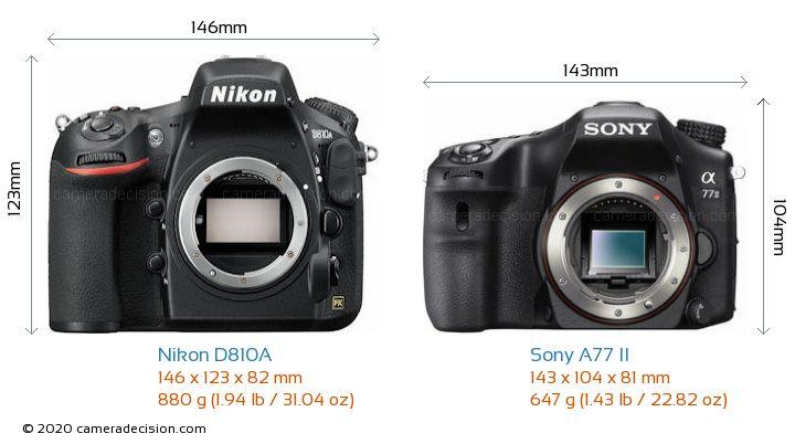 Nikon D810A vs Sony A77 II Camera Size Comparison - Front View