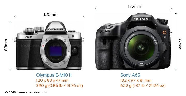 Olympus E-M10 II vs Sony A65 Camera Size Comparison - Front View