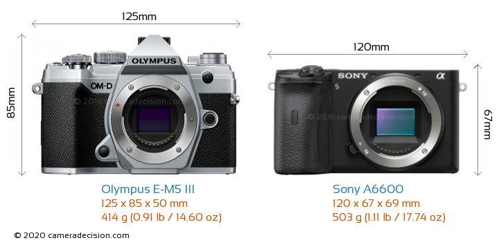 Olympus E-M5 III vs Sony A6600 Camera Size Comparison - Front View