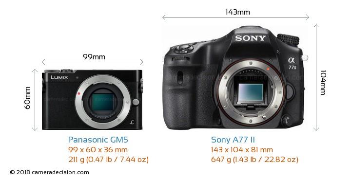 Panasonic GM5 vs Sony A77 II Camera Size Comparison - Front View