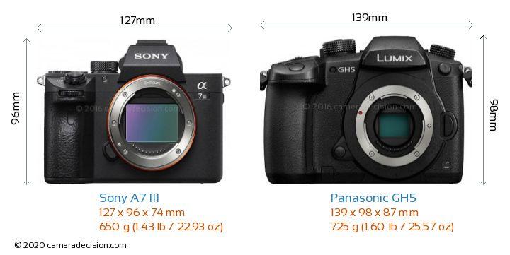 Sony A7 III vs Panasonic GH5 Detailed Comparison