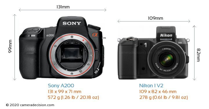 nikon vs canon essay Home » features » smartphone vs dslr: which camera is better  dslr is the canon rebel t1i tkx  the unedited photos from my samsung galaxy s6 vs my nikon.