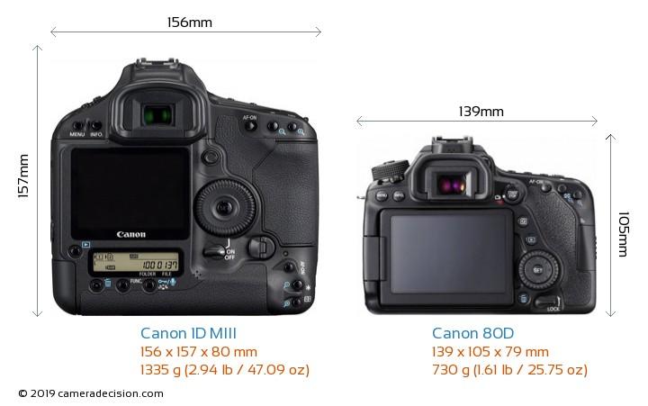 Canon 1D MIII vs Canon 80D Camera Size Comparison - Back View