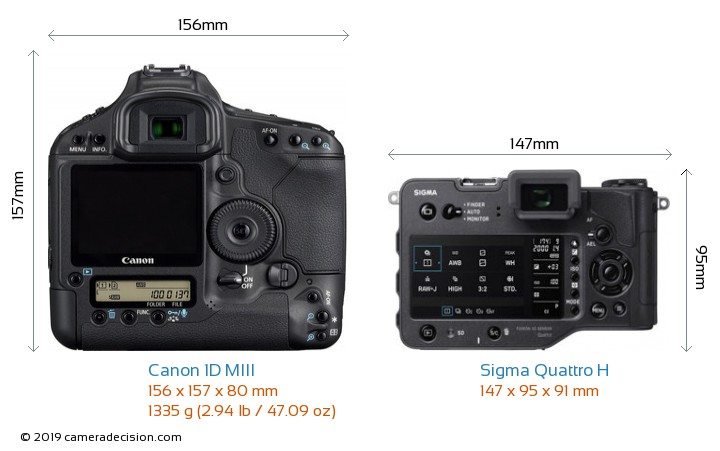 Canon 1D MIII vs Sigma Quattro H Camera Size Comparison - Back View