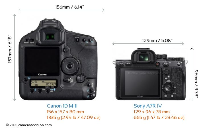 Canon 1D MIII vs Sony A7R IV Camera Size Comparison - Back View