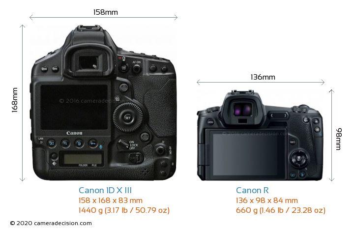 Canon 1D X III vs Canon R Camera Size Comparison - Back View