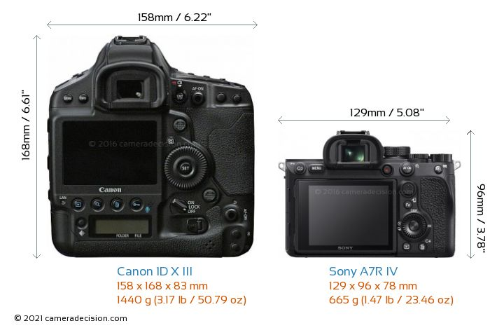 Canon 1D X III vs Sony A7R IV Camera Size Comparison - Back View