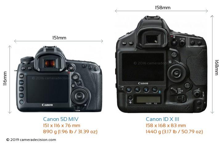 Canon 5D MIV vs Canon 1D X III Camera Size Comparison - Back View