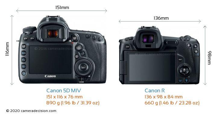 Canon 5D MIV vs Canon R Camera Size Comparison - Back View