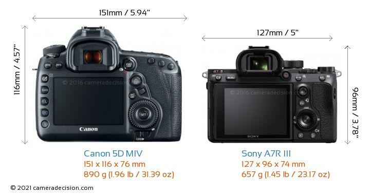 Canon 5D MIV vs Sony A7R III Camera Size Comparison - Back View