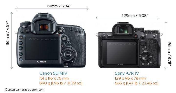 Canon 5D MIV vs Sony A7R IV Camera Size Comparison - Back View
