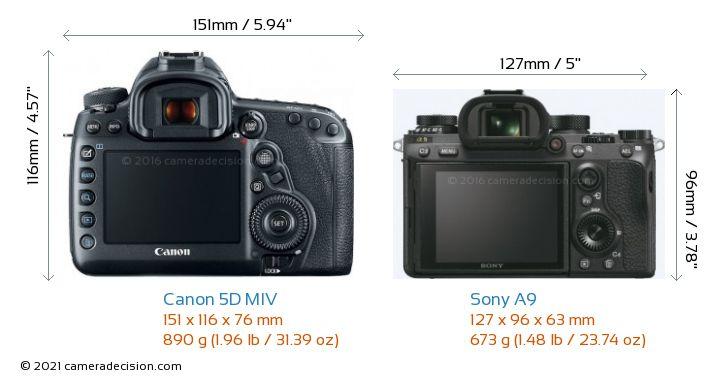Canon 5D MIV vs Sony A9 Camera Size Comparison - Back View