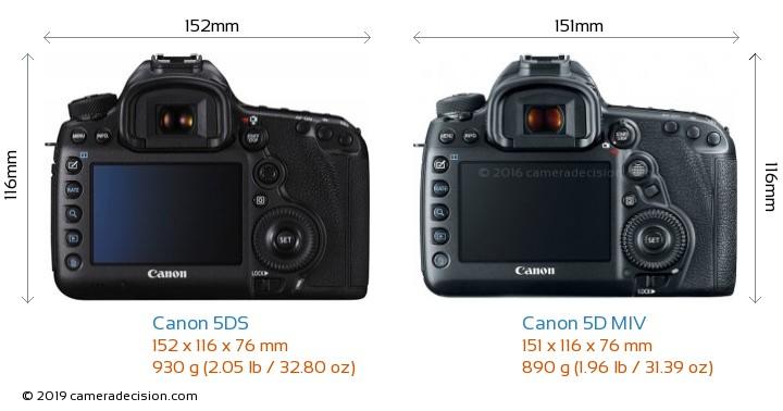 Canon 5DS vs Canon 5D MIV Camera Size Comparison - Back View