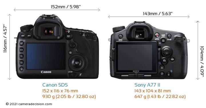 Canon 5DS vs Sony A77 II Camera Size Comparison - Back View