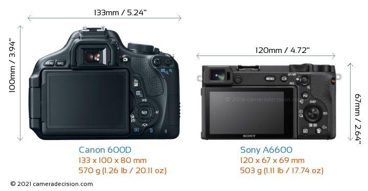 Canon 600D vs Sony A6600 Camera Size Comparison - Back View
