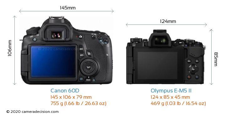 Canon 60D vs Olympus E-M5 II Camera Size Comparison - Back View