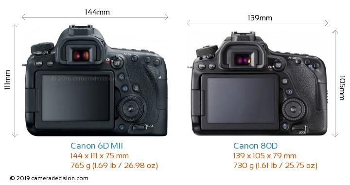 Canon 6D MII vs Canon 80D Camera Size Comparison - Back View