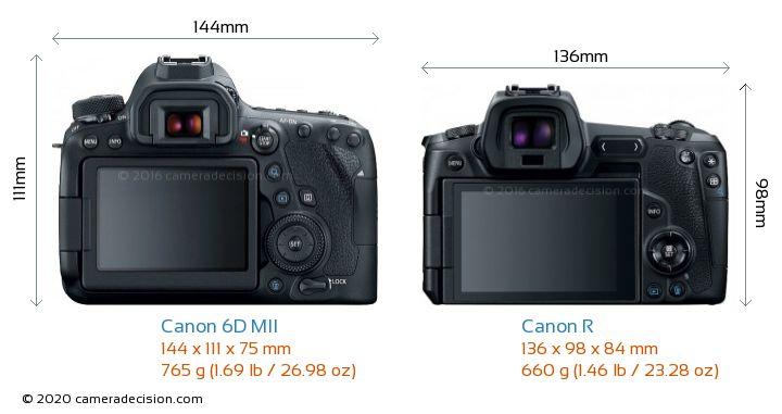 Canon 6D MII vs Canon R Camera Size Comparison - Back View