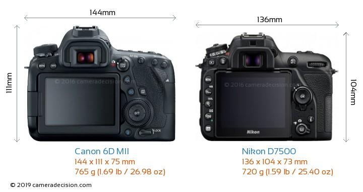 Canon 6D MII vs Nikon D7500 Camera Size Comparison - Back View