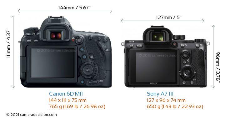 Canon 6D MII vs Sony A7 III Camera Size Comparison - Back View