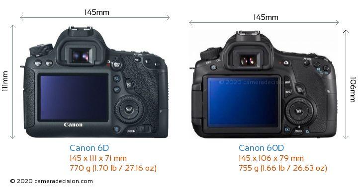 Canon 6D vs Canon 60D Camera Size Comparison - Back View