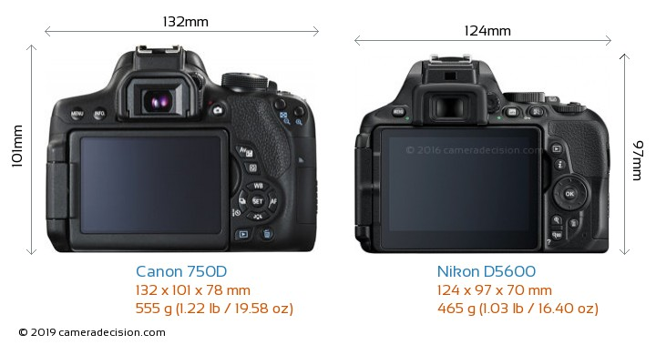 Canon 750D vs Nikon D5600 Camera Size Comparison - Back View
