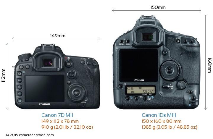 Canon 7D MII vs Canon 1Ds MIII Camera Size Comparison - Back View