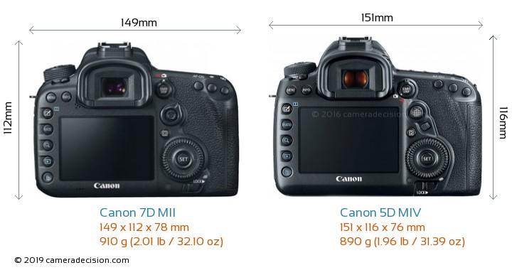 Canon 7D MII vs Canon 5D MIV Camera Size Comparison - Back View