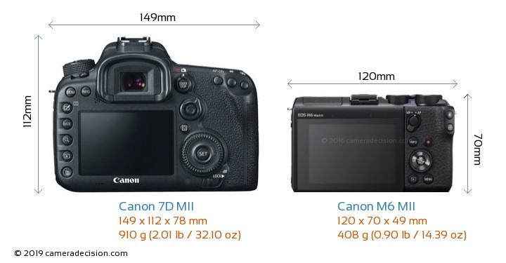 Canon 7D MII vs Canon M6 MII Camera Size Comparison - Back View