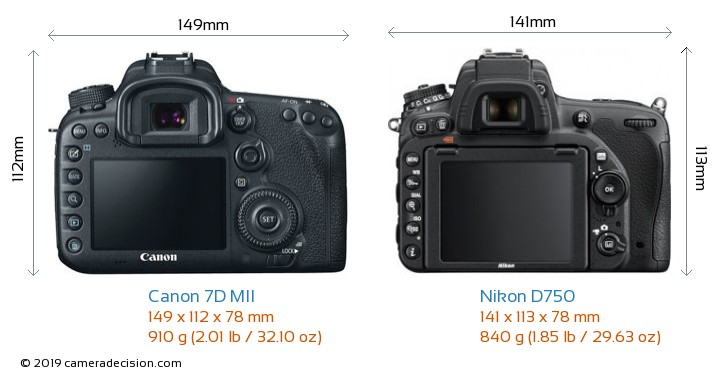 Canon 7D MII vs Nikon D750 Camera Size Comparison - Back View