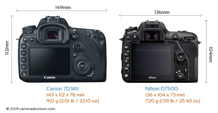 Canon 7D MII vs Nikon D7500 Camera Size Comparison - Back View