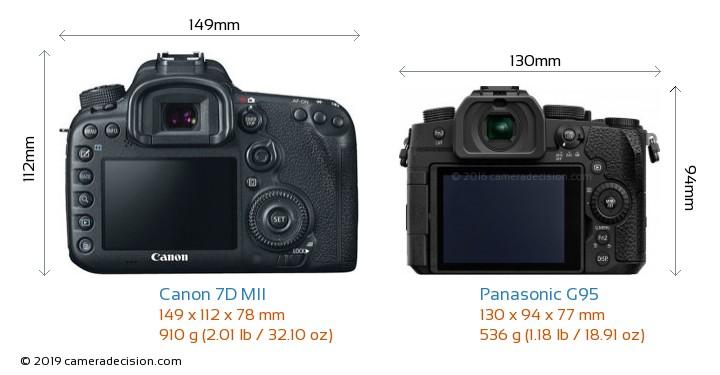 Canon 7D MII vs Panasonic G95 Camera Size Comparison - Back View