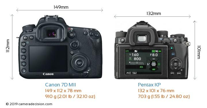 Canon 7D MII vs Pentax KP Camera Size Comparison - Back View