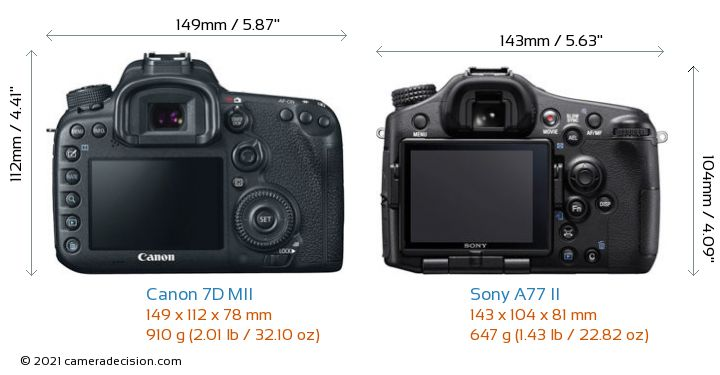 Canon 7D MII vs Sony A77 II Camera Size Comparison - Back View