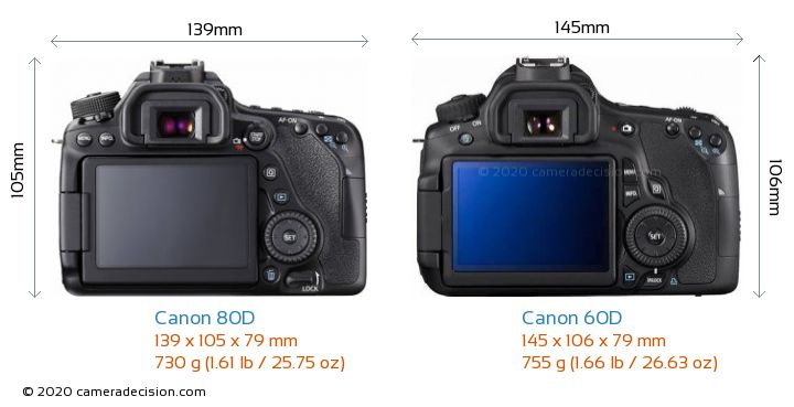 Canon 80D vs Canon 60D Camera Size Comparison - Back View