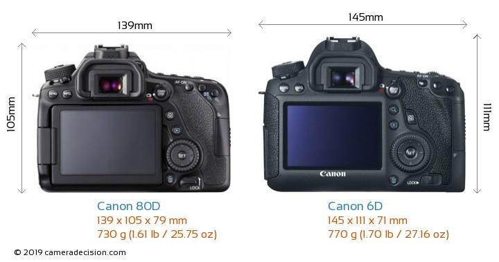 Canon 80D vs Canon 6D Camera Size Comparison - Back View
